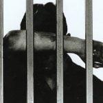 prisoner1111